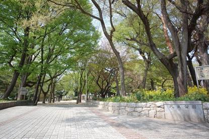 大泉公園の画像1