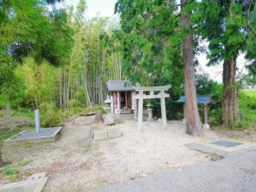 子安神社(こやすじんじゃ)の画像5