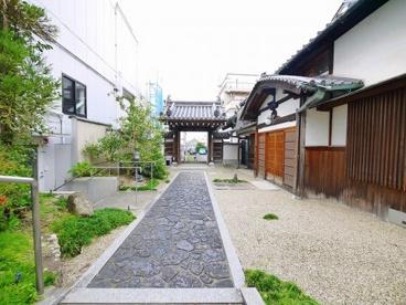 正覚寺(しょうがくじ)の画像5