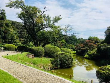 小石川植物園の画像1