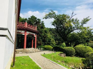 小石川植物園の画像2