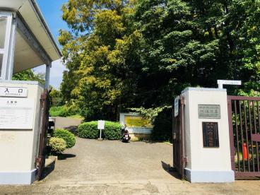 小石川植物園の画像3