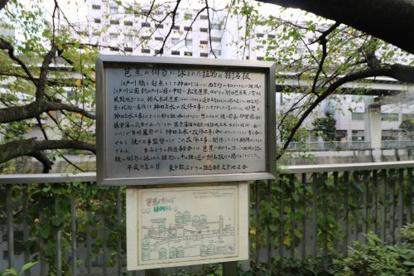江戸川公園の画像2