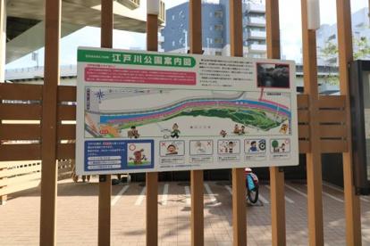 江戸川公園の画像3