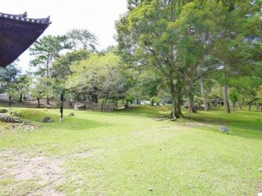 興福寺大湯屋の画像2
