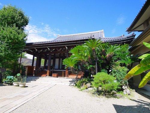 淨教寺(上三条町)の画像