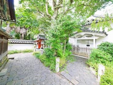 葵神社(漢國神社内)の画像5