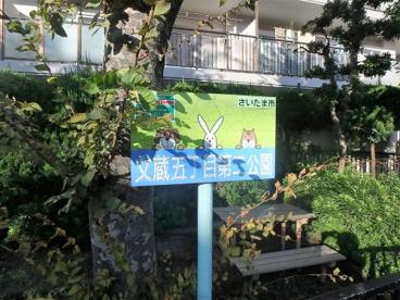 文蔵5丁目第二公園の画像1