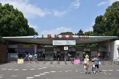 上野動物園の画像1