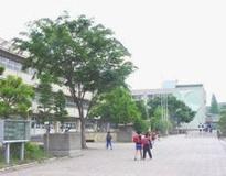 東松山市立新宿小学校