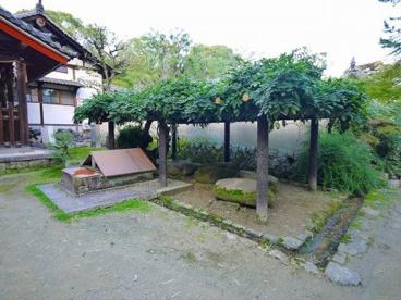 唐招提寺 醍醐井戸の画像4