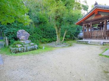 唐招提寺 醍醐井戸の画像5