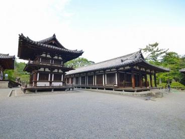 唐招提寺 礼堂の画像5