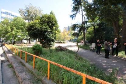 江戸堀公園の画像1