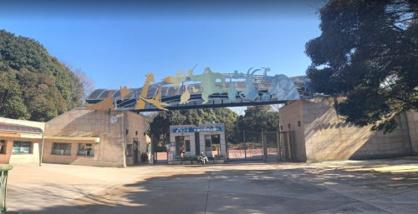 千葉市動物公園 子供動物園の画像1