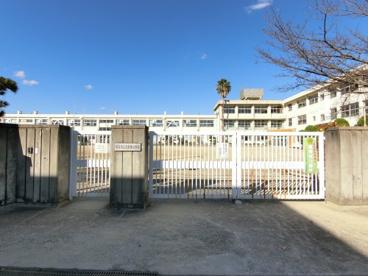 志都美小学校の画像1