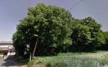 松が丘緑地