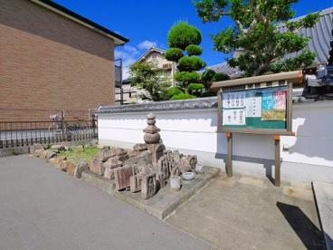 西圓寺(宝来)の画像2