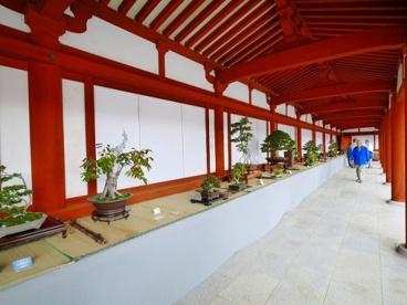 薬師寺 大唐西域壁画殿の画像4