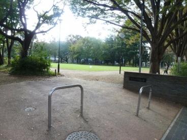 むさしの市民公園の画像1