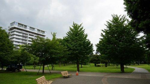 ふじみ野市/福岡中央公園の画像