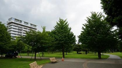 ふじみ野市/福岡中央公園の画像1