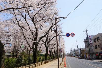ふじみ野市/福岡中央公園の画像3