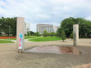 ふじみ野市/福岡中央公園の画像4