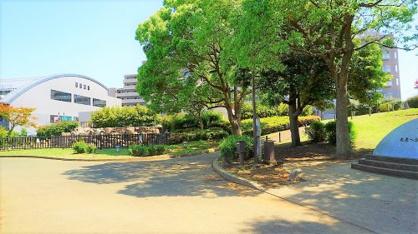ふじみ野市/東久保中央公園の画像3