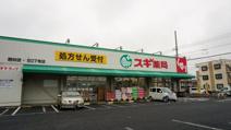 スギ薬局/駒林店