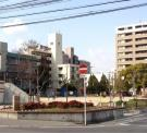 江の木公園
