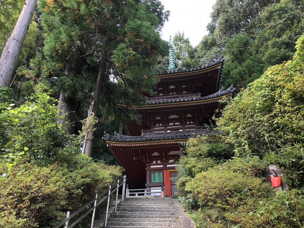 松尾寺三重塔の画像