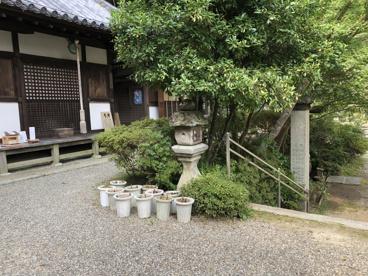 松尾寺阿弥陀堂(あみだどう)の画像5