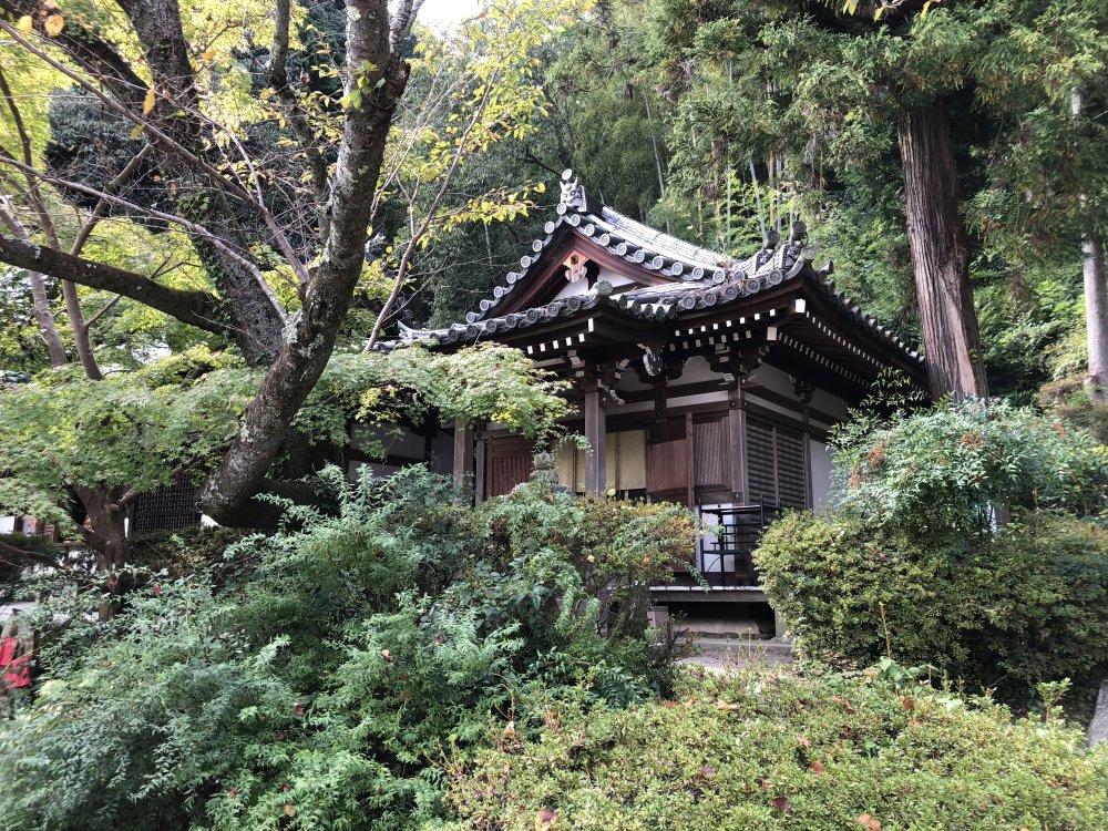 松尾寺行者堂(ぎょうじゃどう)の画像