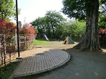 桂木公園の画像1