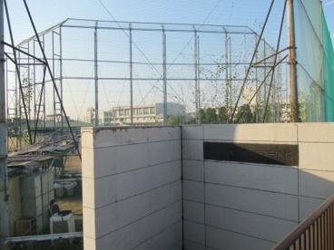 大阪府立枚岡樟風高校の画像1