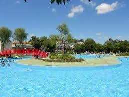 菊名池公園プールの画像1
