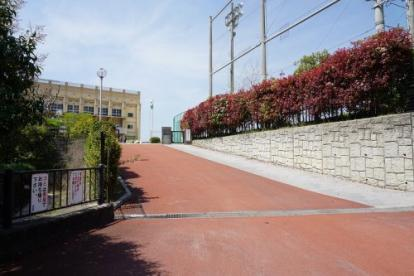 箱崎清松中学校の画像1