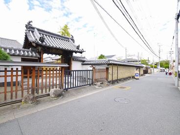 崇徳寺(大豆山町)の画像3