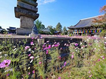 般若寺十三重塔の画像2