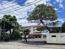 青島東小学校