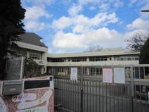津田沼幼稚園