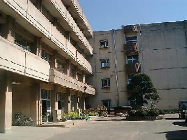 船橋市立七林小学校の画像1