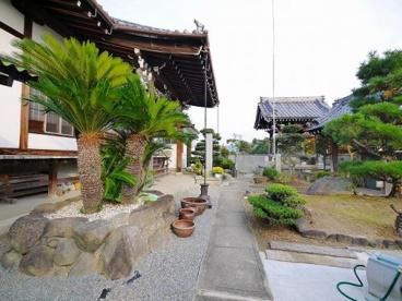 寛照寺(法華寺町)の画像3