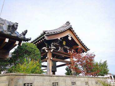 寛照寺(法華寺町)の画像5