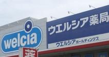 ウエルシア 三鷹野崎店