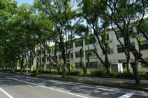 福岡市立千代小学校