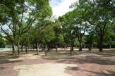 晴明丘中央公園