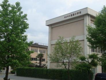 速星小学校の画像1