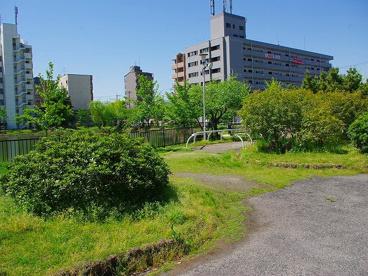 田井庄池公園の画像3